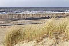 The north sea Royalty Free Stock Photography