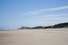 North Sea Beach with Dunes Stock Photography