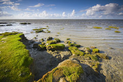 North sea beach in the evening Stock Image
