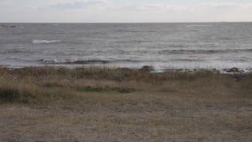 North Sea Beach stock video
