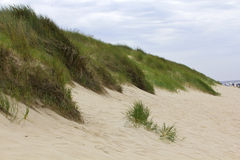 North Sea beach on Sylt island Stock Image