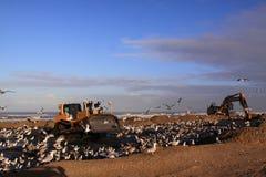 North sea coast bulldozer katwijk Royalty Free Stock Image