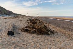 North Sea coast in California, Norfolk, England, UK. Wood on the beach of California, near Caister-on-Sea, Norfolk, England, UK stock photography