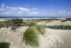 North Sea Coast Royalty Free Stock Photos
