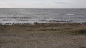 North sea coast stock video footage