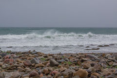 North Sea Coast Storm. North Sea Coast, Russia, summer at north Royalty Free Stock Images