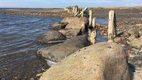 North sea Denmark. stock video