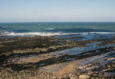 North sea next to St Andrews Castle,Scotland royalty free stock image