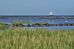 North sea. With sailboat lower saxony royalty free stock photos