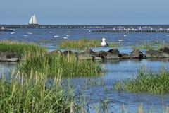 North sea. With sailboat lower saxony Stock Photo