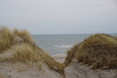 By the North Sea. In the sanddunes at `Søndervig` in Denmark - April 2017 Royalty Free Stock Images