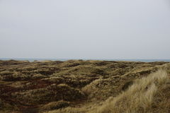 By the North Sea. In the sanddunes at `Søndervig` in Denmark - April 2017 Stock Photography