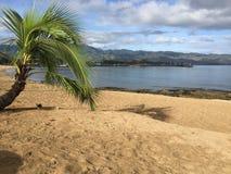 North shore Hawaii. Beachfrobt beachfront scenery royalty free stock photo