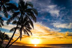 North Shore Hawaii Sunset. Sunset on the shores of the Pacific Ocean on Oahu`s North Shore in Hawaii royalty free stock image