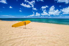North Shore Surf Rescue Royalty Free Stock Photo