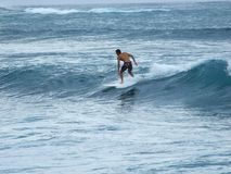North Shore Surfing Stock Photography