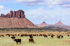 North and South Six Shooter. The Dugout Ranch. South of Canyonlands National Park, Utah Royalty Free Stock Images
