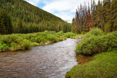 North Ten Mile Creek Royalty Free Stock Photos