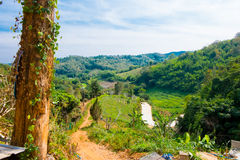 The north of Thailand . The winter scenery in the north of Thailand Stock Images