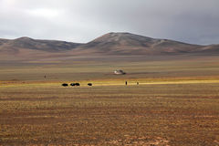 North Tibetan Plateau Royalty Free Stock Images