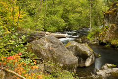 North Umpqua River Royalty Free Stock Image