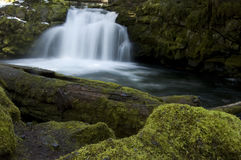 North Umpqua River Falls in Oregon. Mossy logs and rocks provide the foreground to one of the spectacular North Umpqua River waterfalls in Southern Oregon Stock Photo