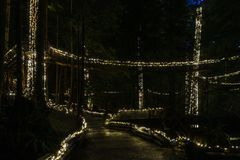 NORTH VANCOUVER, CANADA - January 27, 2018: New Year and Christmas lighting decoration at Capilano Bridge Park. stock photos