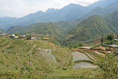 North Vietnam mountains. Picture of North Vietnam mountains stock images