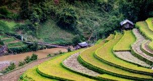 North VietNam. Mu cang chai provider ,Lao Cai , Viet Nam royalty free stock images