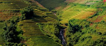 North VietNam. Mu cang chai provider ,Lao Cai  ,  Viet Nam Royalty Free Stock Photography