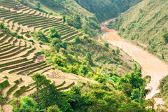North Vietnamese Landscape. Stock Photo