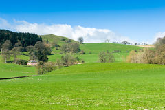 North Wales countryside landscape. In springtime Stock Photography