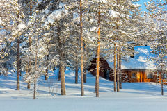North Winter forest nature with wooden house Royalty Free Stock Image