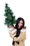 North woman with christmas tree isolated Royalty Free Stock Image