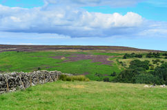 North York moors Yorkshire England Stock Photo