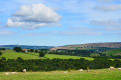 North York moors Yorkshire England Royalty Free Stock Images