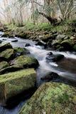 North Yorkshire amarra Inglaterra Imagens de Stock