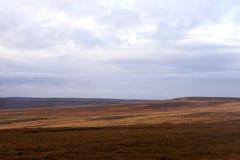 North Yorkshire legt in de Herfst vast Royalty-vrije Stock Fotografie