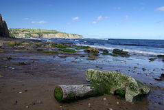 North Yorkshire Moors coast Royalty Free Stock Images