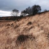 North Yorkshire moors England Royalty Free Stock Photography