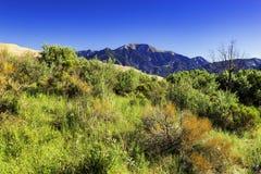 North Zapata Ridge. Great Sand Dunes National Park, Near Alamosa, Colorado Stock Image