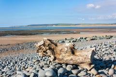 Northam plaża Devon Zdjęcie Stock
