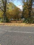 Northampton racerbana Royaltyfri Bild