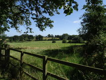 Northamptonshire countryside in the summer. This is a typical seen for the summer time in the Northampton countryside.  Clear blue sky shaded by trees Stock Photography