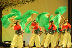 The Northeast yangko dance-2011 dancing class Graduation Concert party Stock Photography