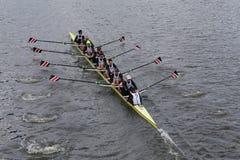 Northeastern  University races in the Head of Charles Regatta Stock Photo