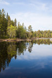 Northen lake Royalty Free Stock Photos