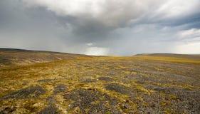 Tundra landscape. The tundra landscape over 70 latitude near Tiksi town Royalty Free Stock Photography