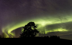 Northen lights over southern Finland Royalty Free Stock Photography
