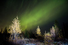 Norther lights (Aurora Borealis) Royalty Free Stock Photos